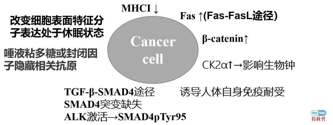 癌症复发转移的原因对癌症药物研发及治疗策略的启示