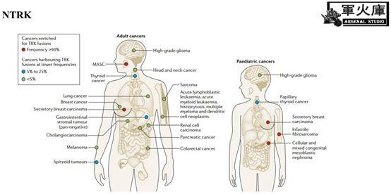 敲黑板了!恺军&司铁 | 肺癌靶向药物红宝书(中篇)