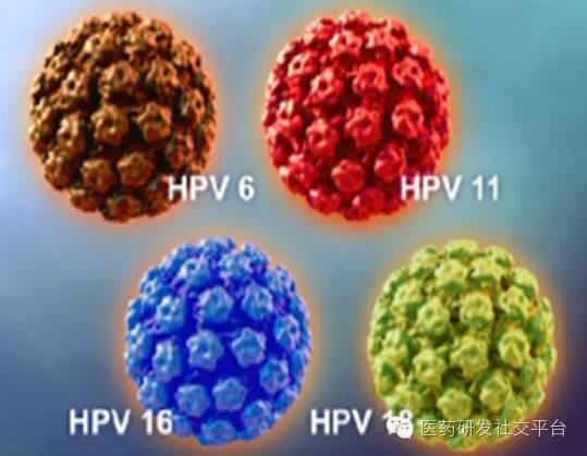 【原创】最靠谱的HPV肿瘤疫苗为什么在美国推广不力,在国内港游却热爆?