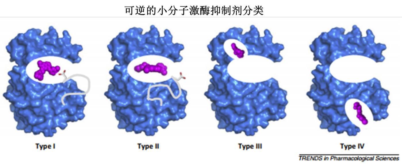 激酶别构抑制剂,会带给我们惊喜吗?