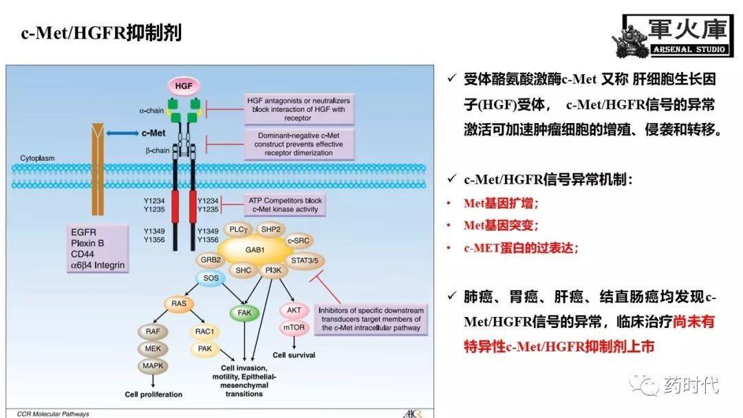 恺军&司铁 | 开学有礼!肺癌靶向药物红宝书!