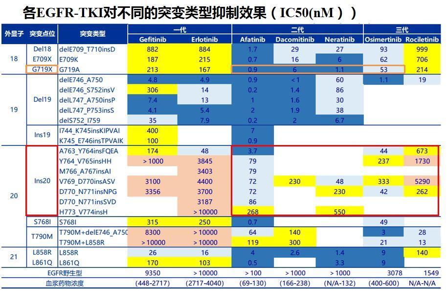 非小细胞肺癌(NSCLC)靶向药物系列 | EGFR抑制剂