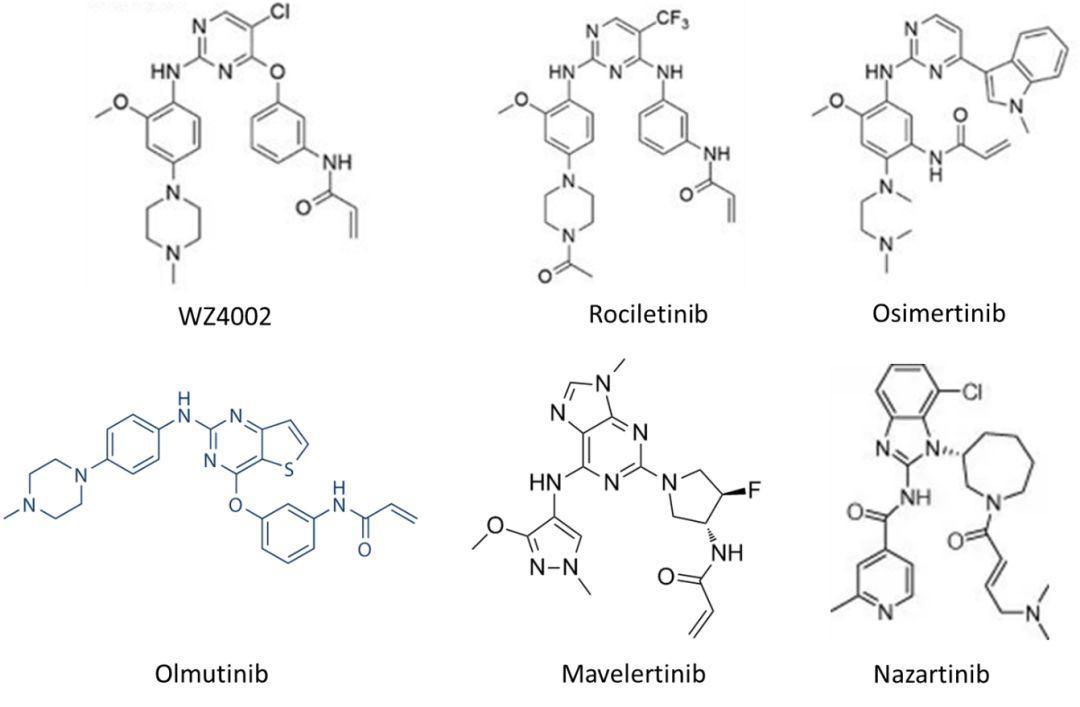 肺癌EGFR靶向药奥希替尼(Osimertinib,TAGRISSO)赢者通吃?