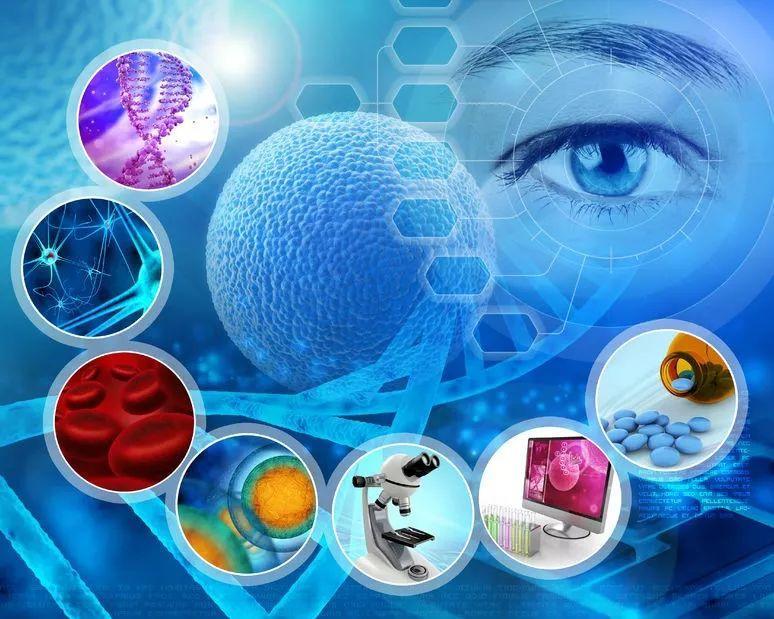 综述 | NASH主要靶点新药动物和临床研究进展
