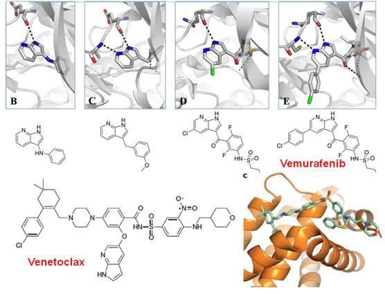 雨里:小分子药物发现的新技术和新思维