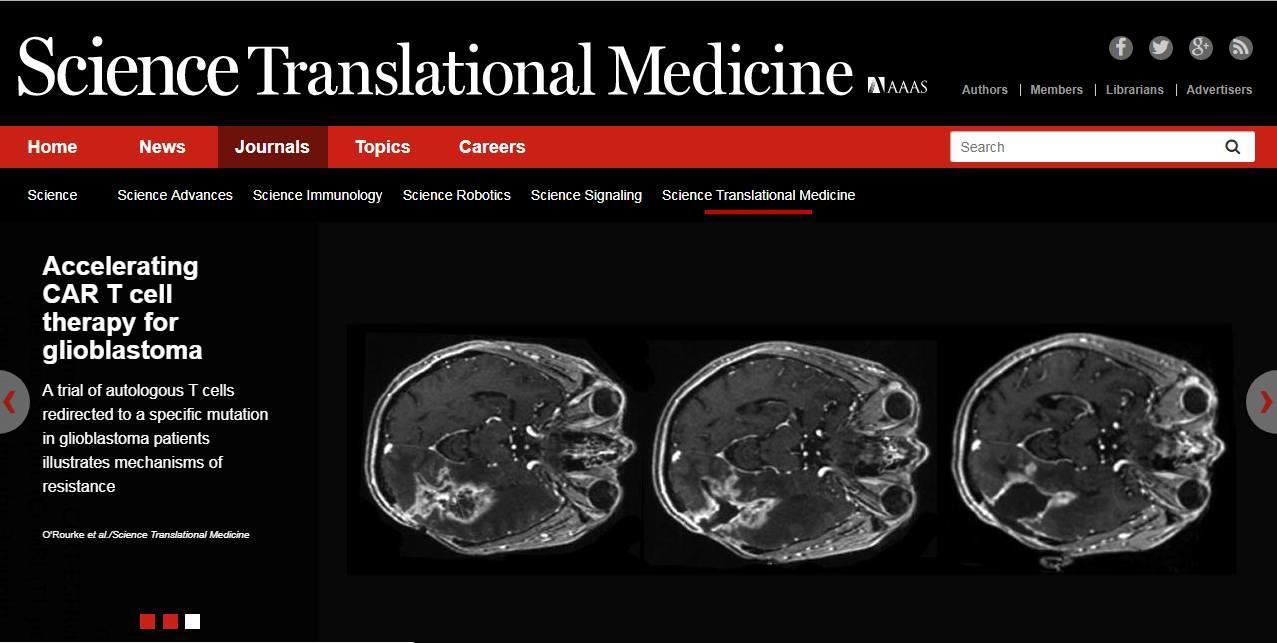 CAR-T细胞疗法+免疫疗法+肿瘤微环境+实体瘤   这篇文章值得好好阅读!