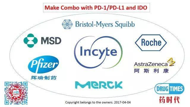 如何开发PD-1与IDO组合疗法:案例分享