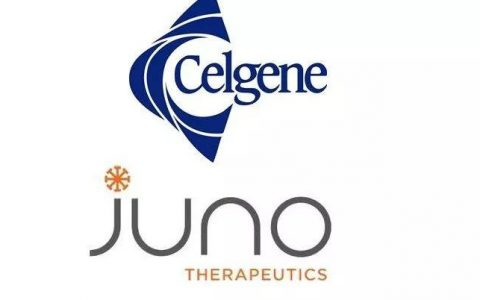 90亿美元!Celgene收购Juno!