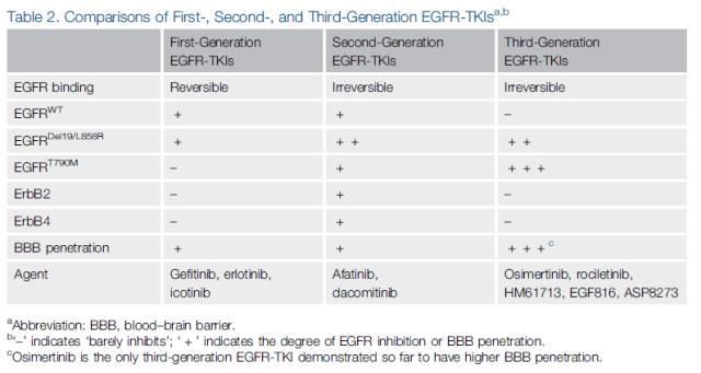 【重磅】表皮生长因子受体 (EGFR) 作为EGFR突变非小细胞肺癌的药物靶点:我们现在身在何处?去向何方?