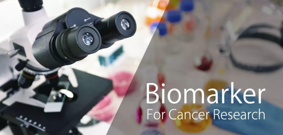 网络研讨会 l 生物标志物检测将如何推进抗肿瘤药物研发