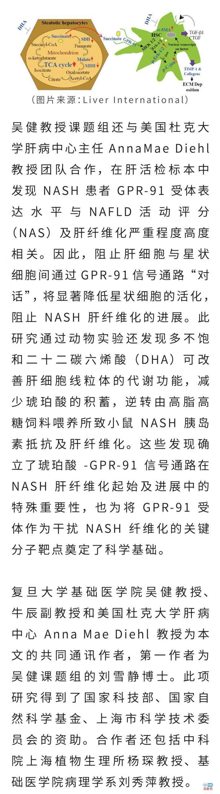 喜讯!复旦大学基础医学院吴健课题组揭示非酒精性脂肪性肝炎肝纤维化的新机制