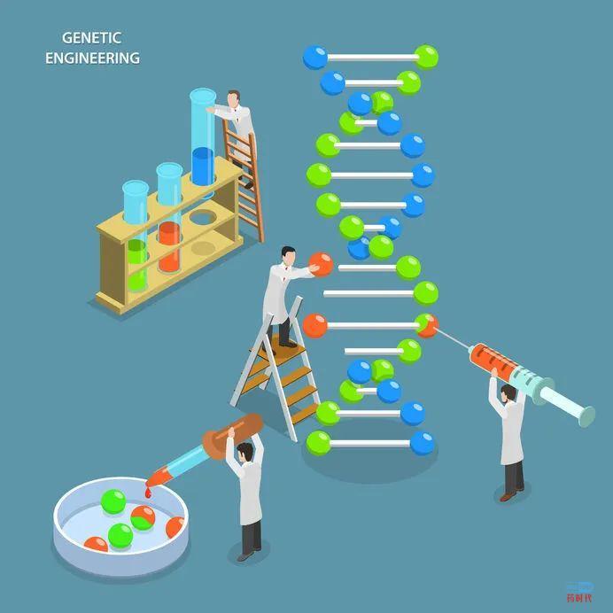 """关注:""""希望之光""""——CRISPR技术"""