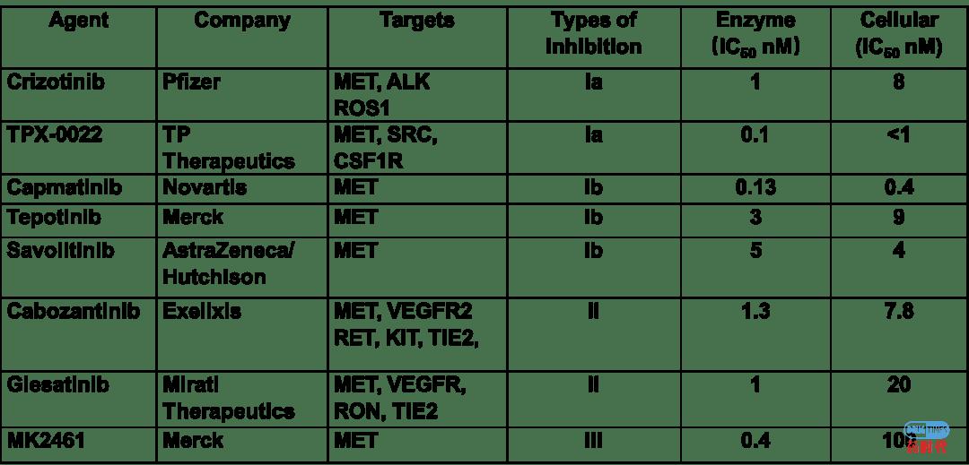 紫薯博士专栏 | 靶向MET的收获季节