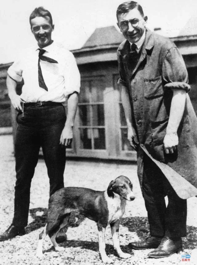 一只名叫Marjorie的实验犬和一个改变世界的药物