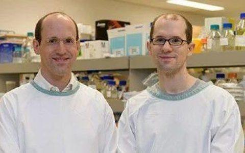 寻回消失的记忆——麦格里大学在阿尔茨海默症研究上取得重大进展