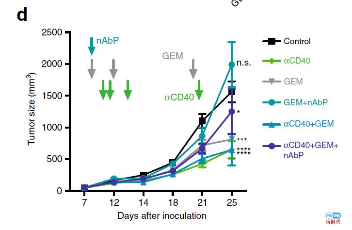 MEK抑制剂+激动性CD40单抗,协同作用,实现更高效抗癌效果