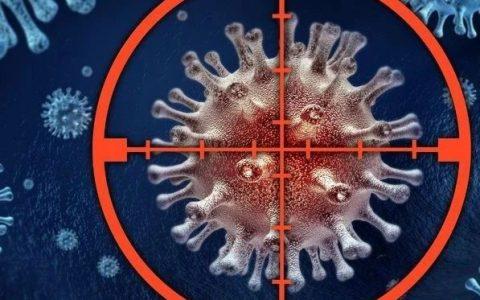 "《Science》重磅发现!3种肠道菌""点亮""4种癌症免疫治疗"