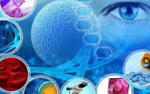 自然通讯:间歇性禁食在不改变人体核心时钟的情况下,改善代谢健康