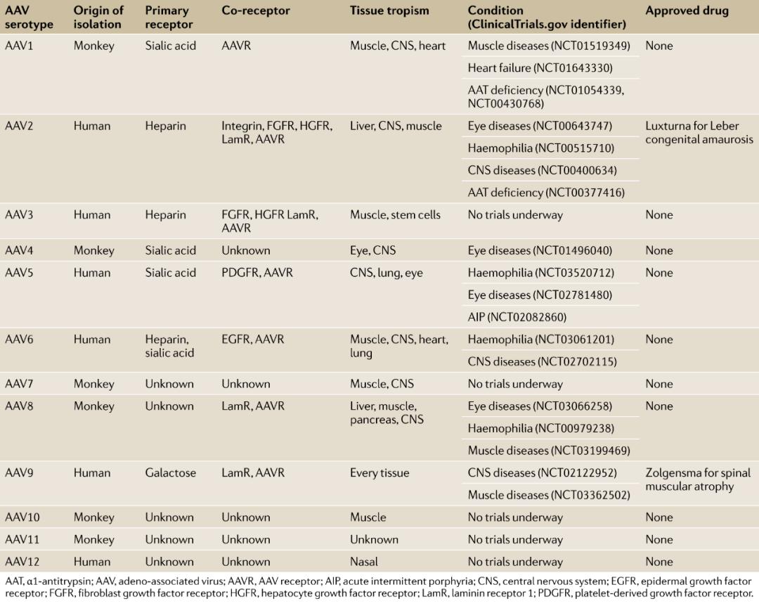 基因治疗的投资要素分析
