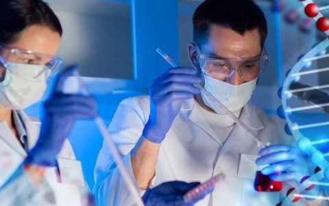 """""""大脑哨兵""""小胶质细胞是否会为多发性硬化症治疗提供新思路?"""