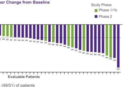 PPT分享   KRAS抑制剂发力!ORR达45%,DCR达96%!Adagrasib单药治疗晚期非小细胞肺癌最新数据公布