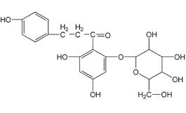 SGLT-2抑制剂,再不加速就老了