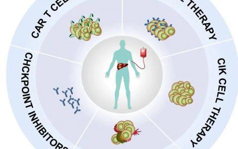 联盟喜讯 复旦大学基础医学院吴健课题组在《BBA Reviews on Cancer》发表进展期肝癌免疫治疗进展评述