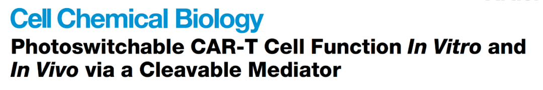 安全!光可控!| CAR-T疗法安全性研究的最新进展