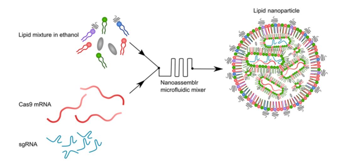 Science子刊:世界首例!CRISPR基因编辑在活体动物上成功治疗癌症,且永久有效