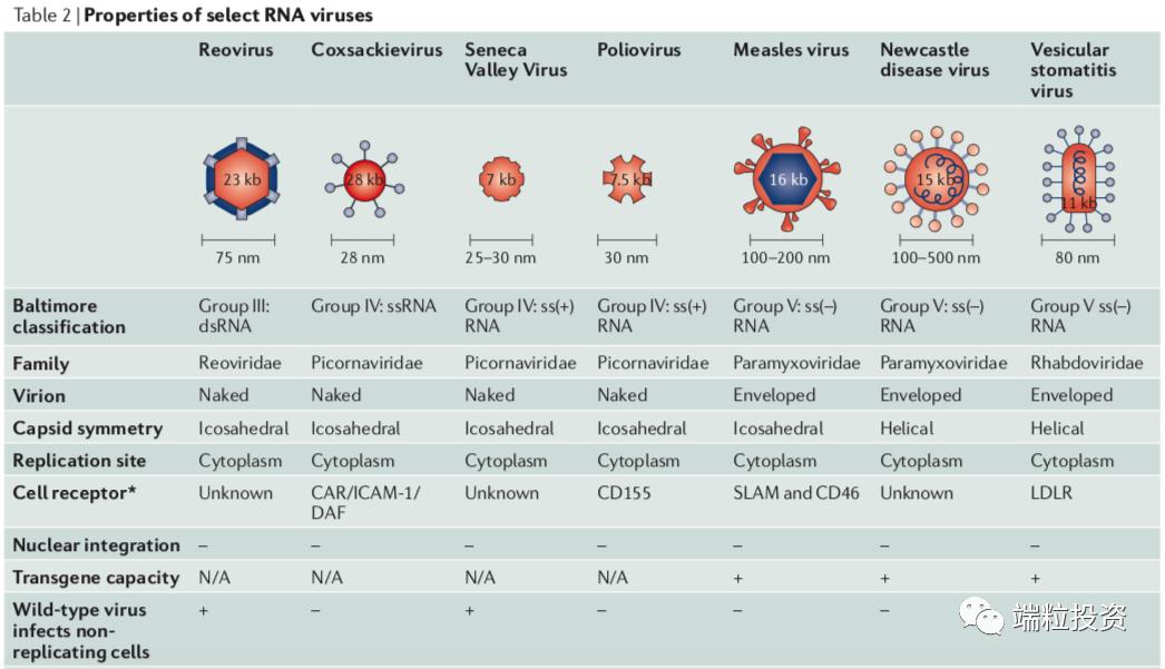 全球和中国溶瘤病毒市场