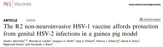 NPJ VACCINES | 让病毒卡在神经末梢,新型疱疹病毒疫苗显示出意想不到的效果