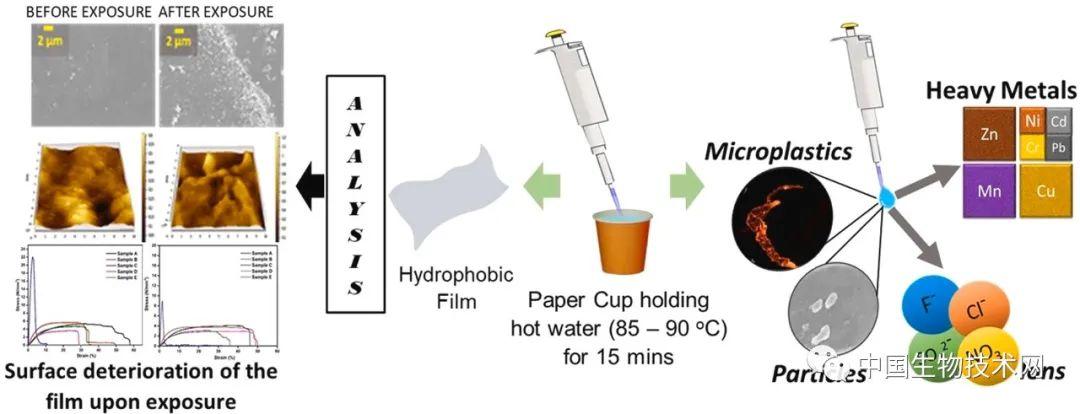 杯具了!满满一纸杯热咖啡中,满满的塑料微粒...
