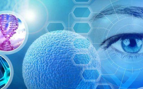 杨森买下源自Hemera Biosciences的基因疗法,加强自身眼部疾病管线