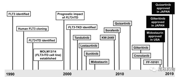 FLT3抑制剂治疗AML研究进展