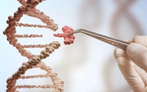 谢雨礼博士 | 生物医药2021:把握创新转型的大势