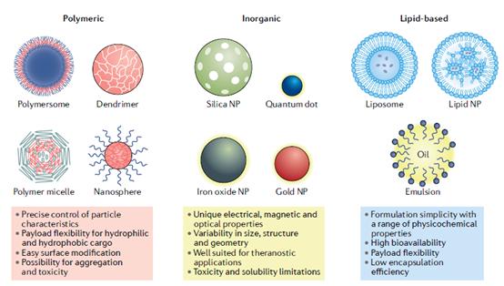 药物递送系统绕不开的话题——纳米颗粒