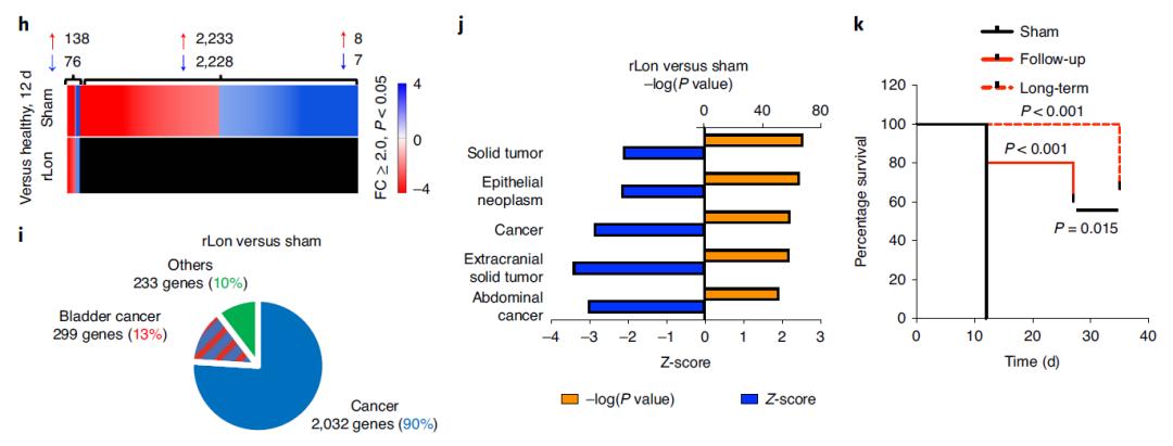 癌症治疗新策略:来自大肠杆菌的蛋白酶,能够降解癌蛋白MYC,提高癌症存活率