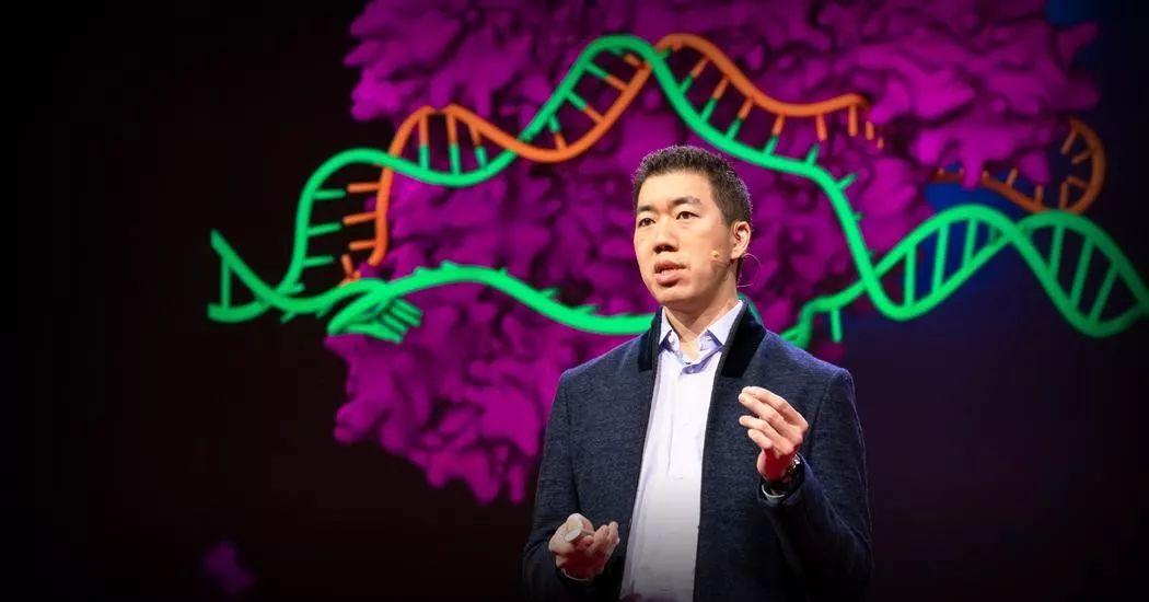 Nature:总结过去的一年里,CRISPR在临床中的突破性进展