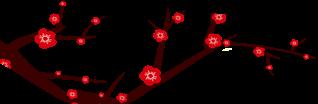 牛!2月份第3家IPO!君联资本所投公司NexImmune在纳斯达克上市,开发全球新一代免疫调节细胞疗法