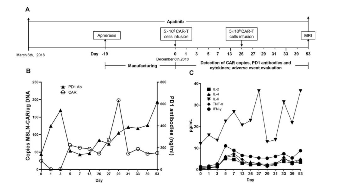 重磅!世界首例自分泌PD-1抗体CAR-T细胞联合疗法治疗复发实体瘤临床报告!CAR-T白泽剑,剑指实体瘤!