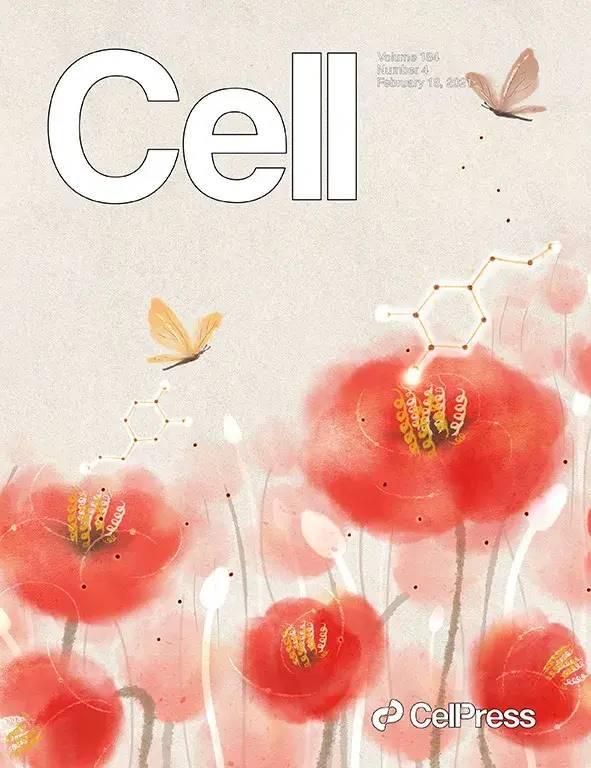 开门红!华西医院连续在国际知名期刊Science、Cell发表重磅文章!
