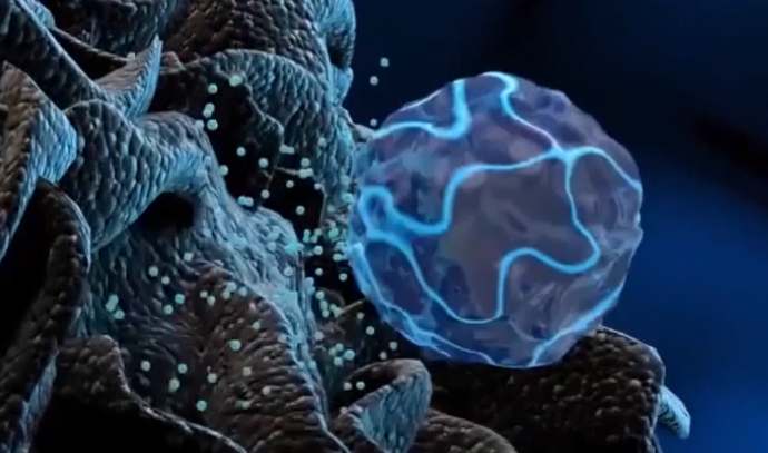 CAR-T细胞治疗为什么用自己的细胞更好?《Nature》子刊最新研究给出答案