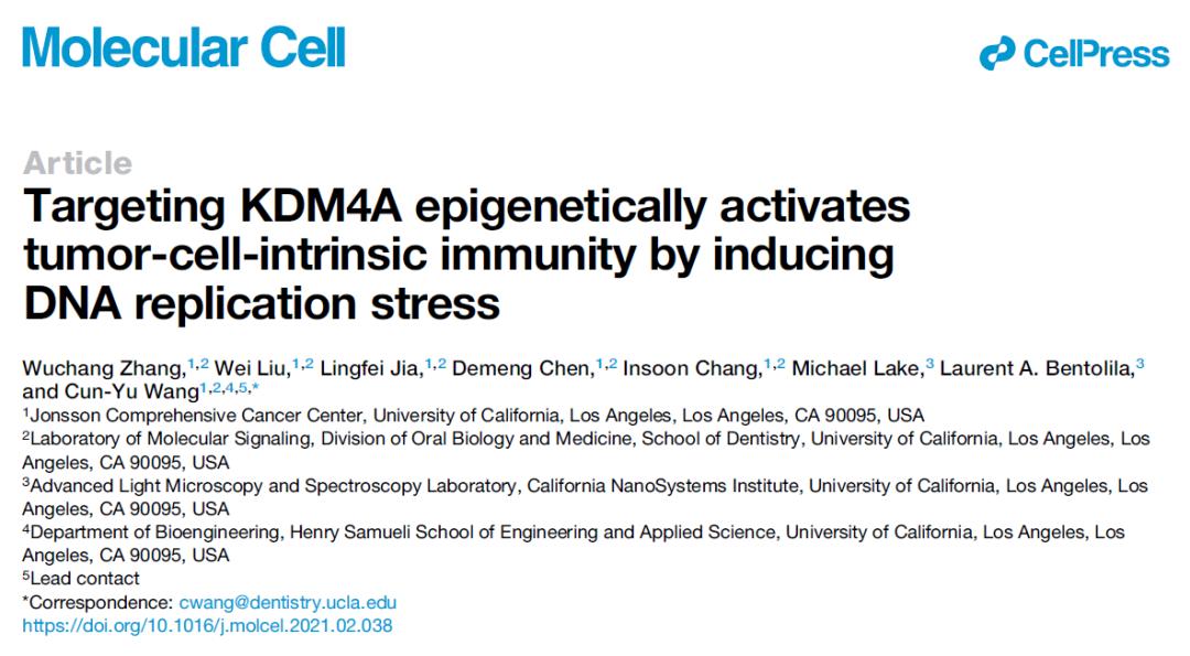 Cell子刊:王存玉院士发现抗癌新思路,抑制酶活性,提高癌症免疫疗法效果