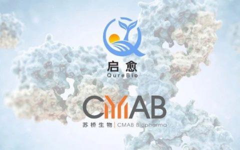 祝贺苏桥生物合作伙伴启愈生物全球首个获批美国IND的Claudin18.2/PD-L1双特异性抗体药物!