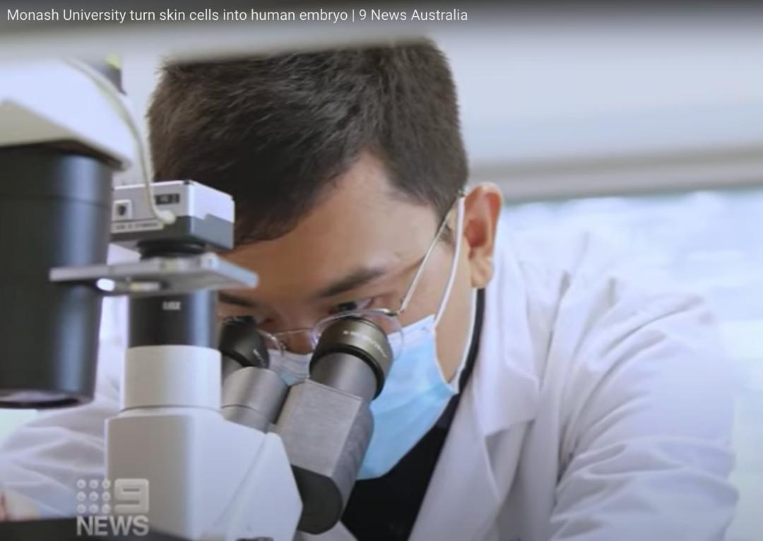 Nature封面文章:iPSC领域里程碑进展——刘晓东等用体细胞重编程技术构建首个完整的人类胚胎模型!