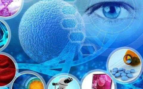 加固晚期癌症的最后一道防线——紫杉醇研发、市场情况浅析
