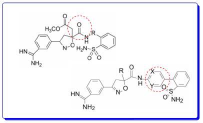 抗凝剂FXa抑制剂阿哌沙班的诞生之路