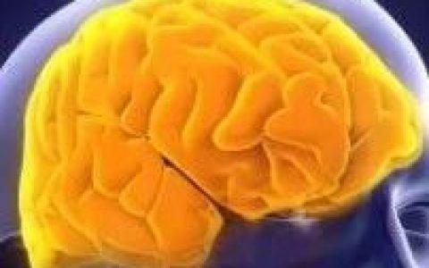 跨界联手!干细胞携手免疫细胞,更好治疗脑损伤!《Stem Cells》最新研究