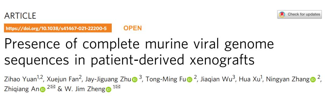 为什么这么多抗癌药在小鼠模型上效果突出,到人体试验就不灵了?华人学者发现PDX模型大多感染了小鼠病毒