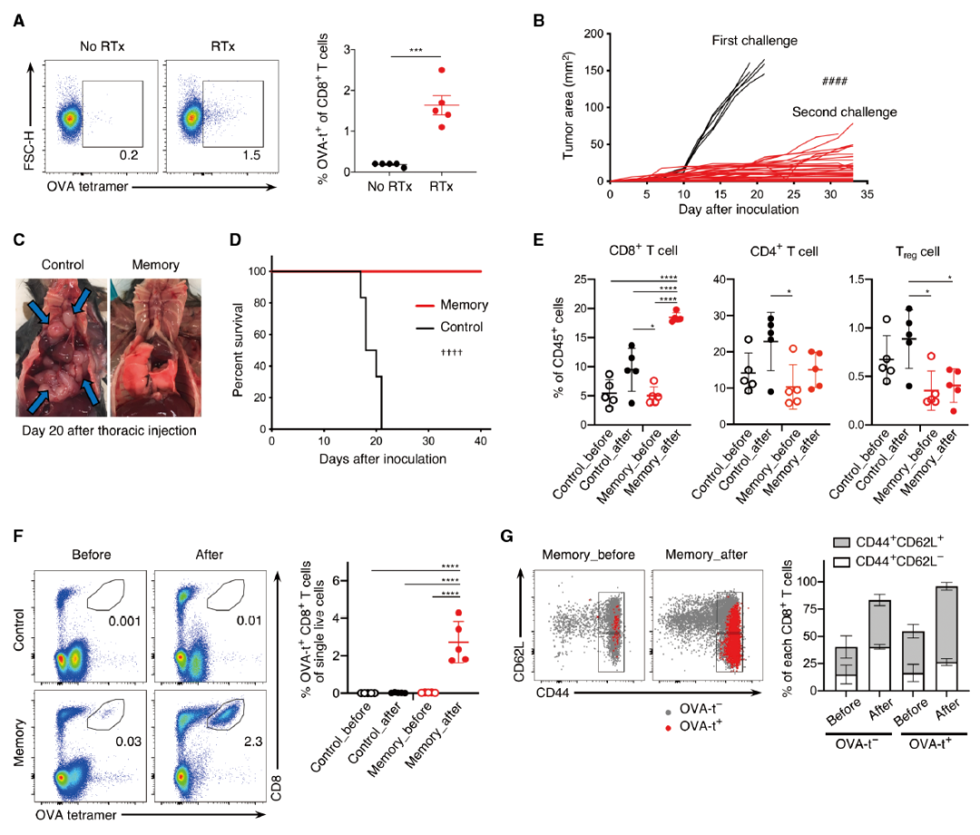 Science子刊:三管齐下显奇效,免疫治疗+放疗+手术,实现最大化抗肿瘤免疫反应